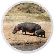 Hippo Mum And Calf Round Beach Towel