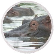 Hippopotamus In Kenya Round Beach Towel