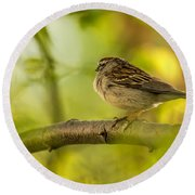 His Eye Is On The Sparrow Round Beach Towel