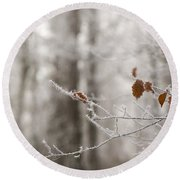 Hoar Frost Round Beach Towel by Anne Gilbert