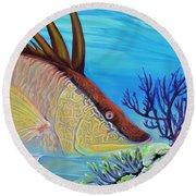 Hogfish Round Beach Towel
