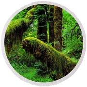 Hoh Rainforest Round Beach Towel