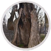 Hollow Tree At Mather Mill Round Beach Towel