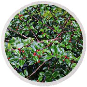 Holly Bush - Round Beach Towel