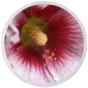 Hollyhock Flower Round Beach Towel