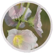 Hollyhock Named Indian Spring Pink Round Beach Towel