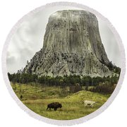 Home On The Range At Devils Tower Round Beach Towel