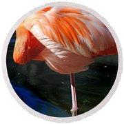 Homosassa Springs Flamingos 7 Round Beach Towel