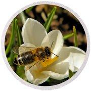 Honey Bee And Crocus Round Beach Towel