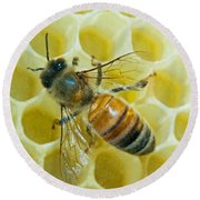 Honey Bee In Hive Round Beach Towel