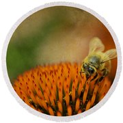 Honey Bee On Flower Round Beach Towel by Dan Friend