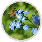 Honey Bee On Forget-me-not Flowers Round Beach Towel