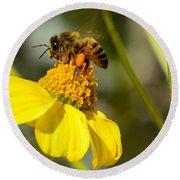 Honeybee Feasting On Nectar Of Yellow Flower Round Beach Towel