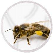 Honeybee Round Beach Towel