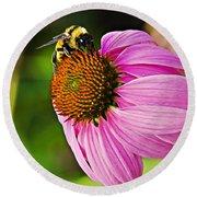 Honeybee On Echinacea Flower Round Beach Towel
