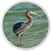 Honeymoon Island Heron Round Beach Towel