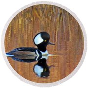 Hooded Merganser At Sunset Round Beach Towel