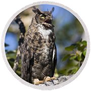 Hoot Hoot Round Beach Towel