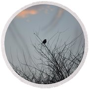 Hope Perched  Atop Round Beach Towel