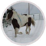 Horse 03 Round Beach Towel