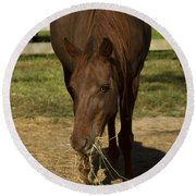 Horse 32 Round Beach Towel