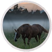 Horse And Fog Round Beach Towel
