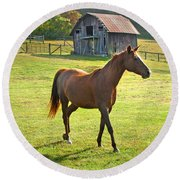 Horse And Old Barn In Etowah Round Beach Towel