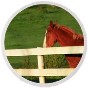 Horse And White Fence Round Beach Towel