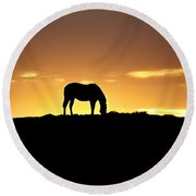Horse At Sunrise Round Beach Towel