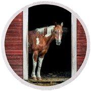 Horse - Barn Door Round Beach Towel