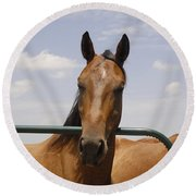 Horse Beauty Round Beach Towel