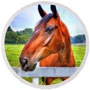 Horse Closeup Round Beach Towel