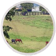 Horse Country Round Beach Towel