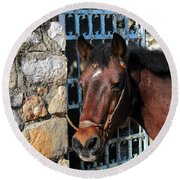 Horse Head Round Beach Towel