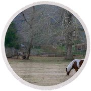 Horse In The Mist Round Beach Towel