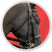 Horse On Red Round Beach Towel