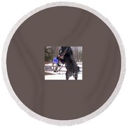 Horse Playing Ball Round Beach Towel