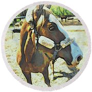 Horse Point Of View Round Beach Towel