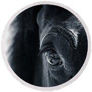 Horse Reflection Round Beach Towel