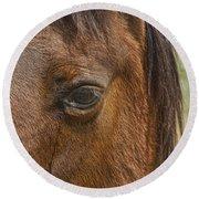 Horse Tear Round Beach Towel