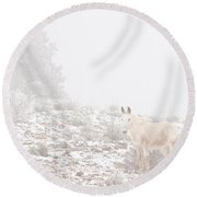 Horse With Winter Season Snow And Fog Round Beach Towel