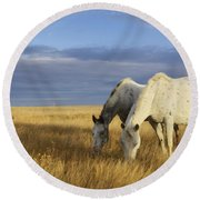Horses Grazing In Cypress Hills Round Beach Towel