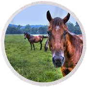 Horses In A Field Round Beach Towel