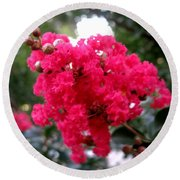 Hot Pink Crepe Myrtle Blossoms Round Beach Towel