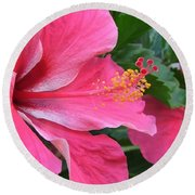 Hot Pink Hibiscus 2 Round Beach Towel