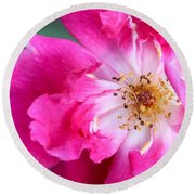 Hot Pink Rose Round Beach Towel
