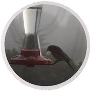 House Finch In The Fog Round Beach Towel