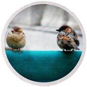 House Sparrows Round Beach Towel