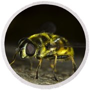 Hoverfly Round Beach Towel