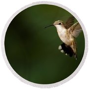 Hovering Hummingbird  Round Beach Towel
